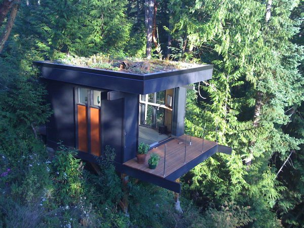 Treehouse-in-the-US-The-Cube-treetop-office-©-Peter-Frazier-002